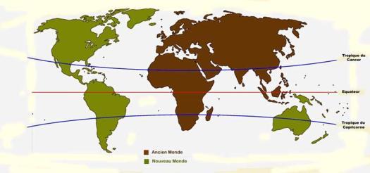 Ancien Monde & Zones tropicales-blog