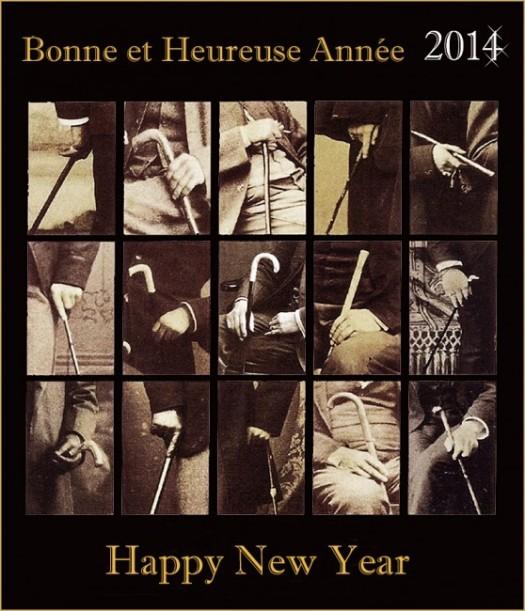 2014,cannes,bâtons,cannes de collection,
