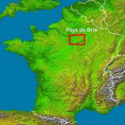 Capitaine & Dames - Pays de Brie