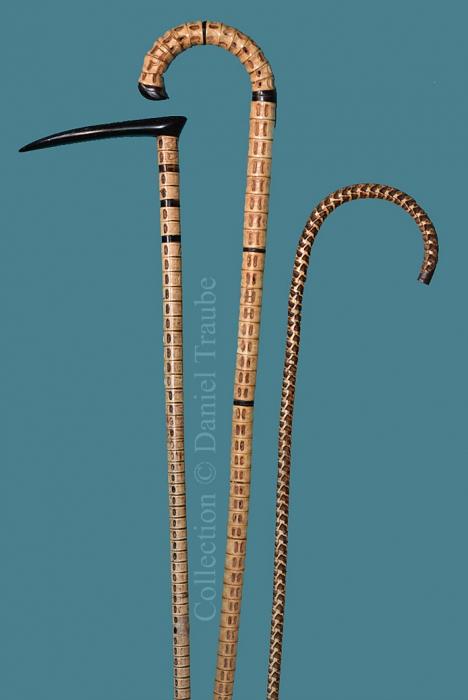 canne, cane, walking stick, marin, vertèbre, colonne vertébrale, curiosité, squale, serpent,